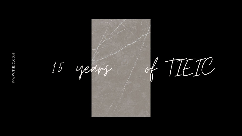 15 years of  TIEIC India : OUR PRODUCTS
